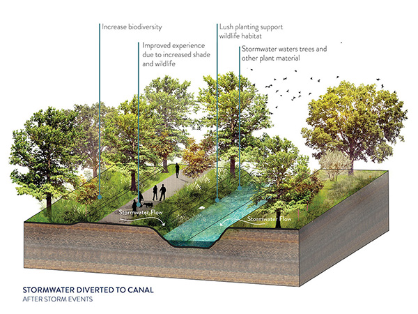 High Line Canal Framework Plan