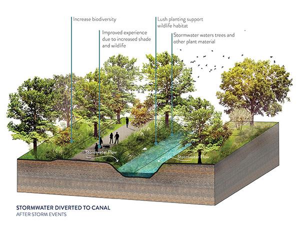 High Line Canal Framework Plan